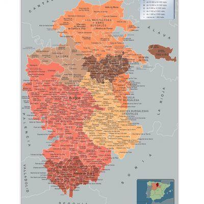 Mapa Municipios de la provincia de Burgos en Castilla y León