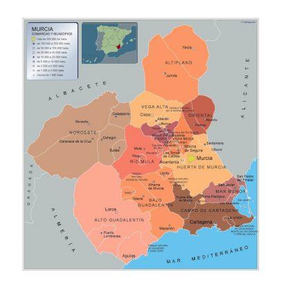 Mapa Murcia por municipios gigante